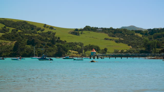 people stand on a wooden raft, and jump off a jetty in akaroa - akaroa stock videos & royalty-free footage