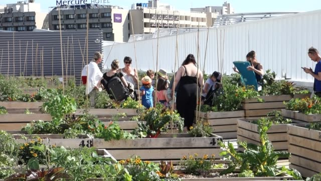 people strolls when opening a giant urban farm. the nu-paris project, for urban nature, on the roof of hall 6 of the parc des expositions. the... - nu stock videos & royalty-free footage