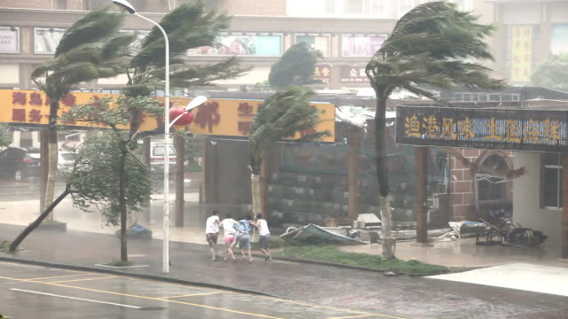 people struggle in fierce hurricane winds - hurrikan stock-videos und b-roll-filmmaterial