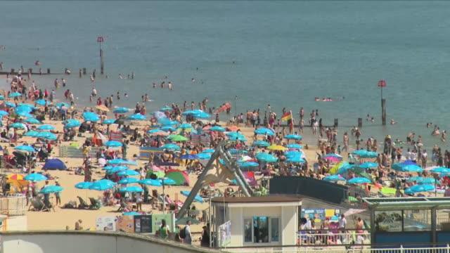 vídeos y material grabado en eventos de stock de people sunbathing on a beach - bronceado