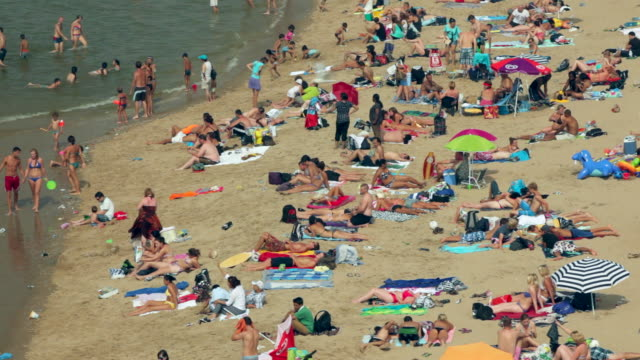 people sunbathing on the beach. summertime, scheveningen, the hague, netherlands - sunbathing stock videos and b-roll footage