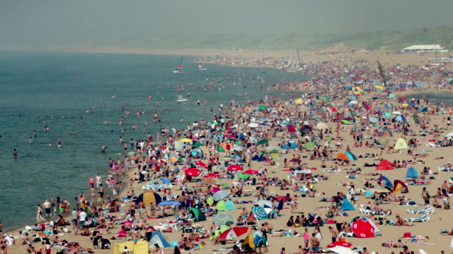 people sunbathing on the beach. summertime, scheveningen, the hague, netherlands - beengt stock-videos und b-roll-filmmaterial