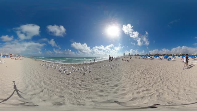 people suntan on south beach miami by the atlantic ocean - アールデコ地区点の映像素材/bロール