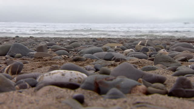 vídeos de stock, filmes e b-roll de people surfing off the coast of cornwall - pedra solta