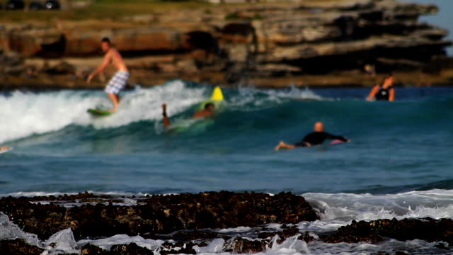 vídeos de stock, filmes e b-roll de pessoas de surfe - praia de bondi