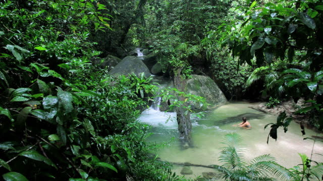 people swimming in tropical rainforest pool, mossman gorge, daintree national park nr cairns, queensland, australia - waterfall stock videos & royalty-free footage