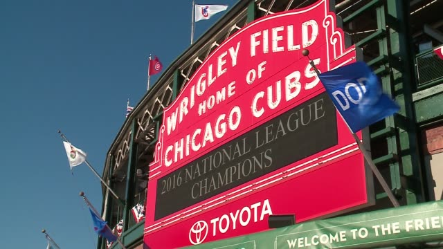 wgn people take pictures outside wrigley field on the day after the chicago cubs won the 2016 national league pennantthe first time since 1945 on oct - baseball mal stock-videos und b-roll-filmmaterial
