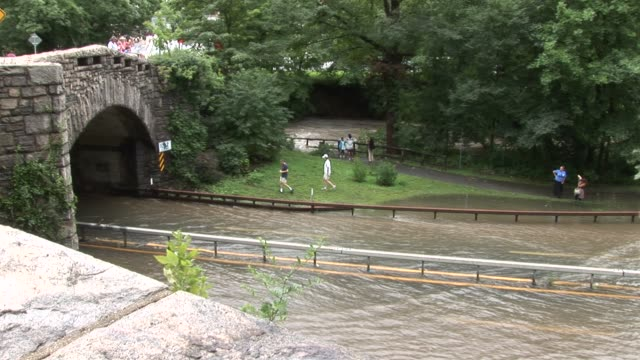 people taking photos along flooded river, zoom back to reveal or area bronx river parkway flooded on august 28, 2011 in scarsdale, new york - hurricane irene stock videos & royalty-free footage