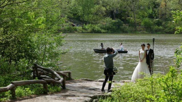 people taking wedding pictures in central park, new york city - photographer stock videos & royalty-free footage