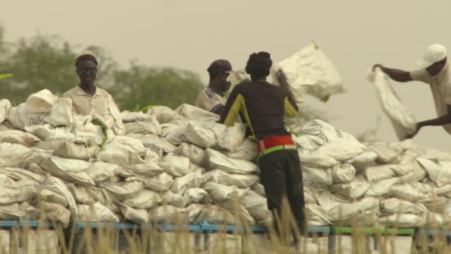 stockvideo's en b-roll-footage met people throwing sweetcorn crop onto lorry, senegal - verfrissing