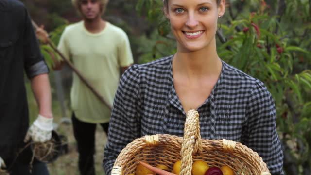 cu tu td people together gardening in orchard / big sur, california, usa - gardening glove stock videos & royalty-free footage