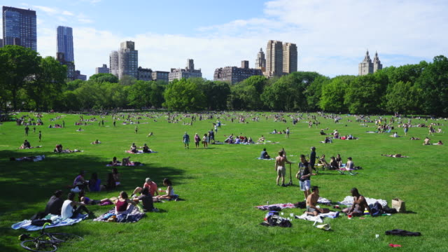 people try to keep social distancing each other and enjoy the holiday police officers will limit access to the central park sheep meadow to prevent... - us memorial day stock videos & royalty-free footage