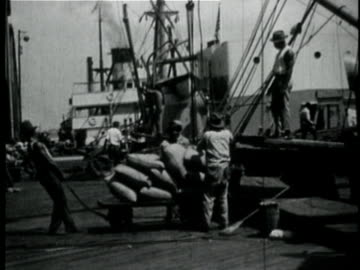 1929 b/w montage people unloading sacks of grain from ship in port / new orleans, louisiana - 1920 stock videos & royalty-free footage