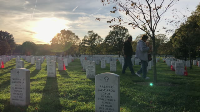 vidéos et rushes de people visit section 60 at arlington national cemetery on veterans day november 11 2019 in arlington virginia americans observed veterans day to... - pierre tombale