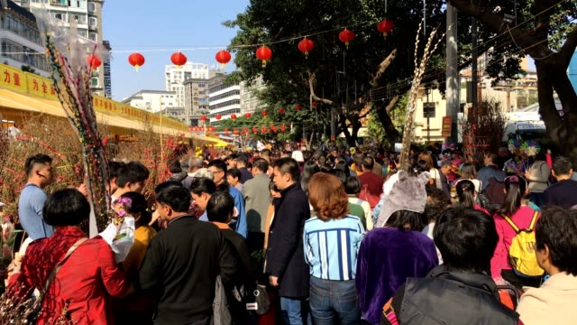 People visit the flower market in the Liwan District before the start of the Chinese New Year Every district has a flower market every New Year in...