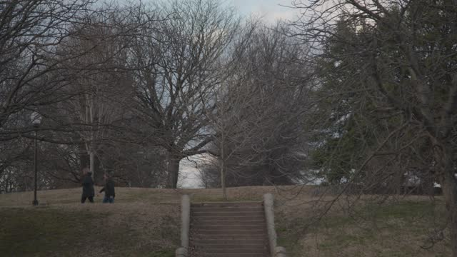 people walk a dog at patterson park on february 5, 2021 in baltimore, maryland. - profile stock videos & royalty-free footage