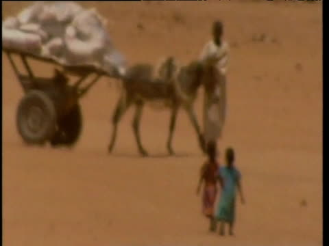 people walk along desert land during heat haze darfur sudan; sep 04 - pferdeartige stock-videos und b-roll-filmmaterial