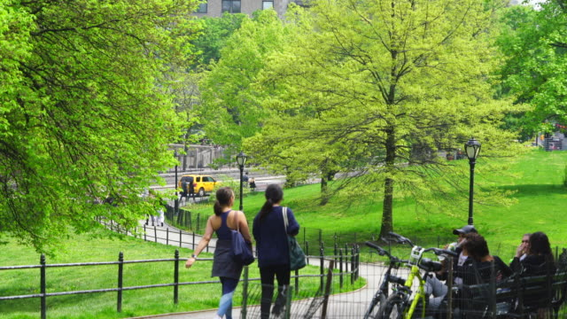 vidéos et rushes de people walk down the footpath, which is surrounded by many fresh green leaves trees in central park new york city ny usa on may 04 2019. - banc public