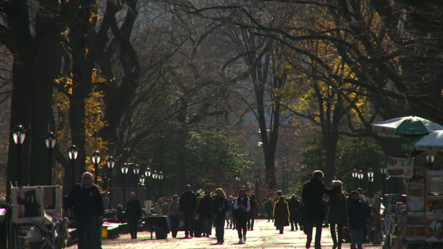 people walk down the mall in central park on a crisp december day. - december stock videos & royalty-free footage