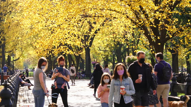 people walk down the mall wearing the face mask on during the covid-19 pandemic on november 07 in central park, new york city, new york. - face down stock videos & royalty-free footage