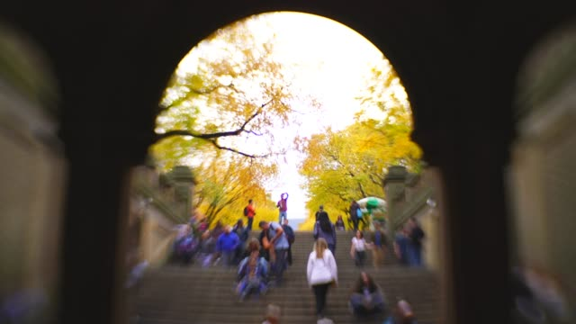 vídeos y material grabado en eventos de stock de people walk down the stairs of the bethesda terrace, which are surrounded by autumn color trees at the mall in central park new york ny usa on nov. 01 2018. - fuente bethesda