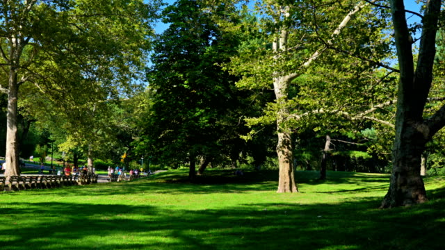 people walk in central park - natural parkland stock videos & royalty-free footage
