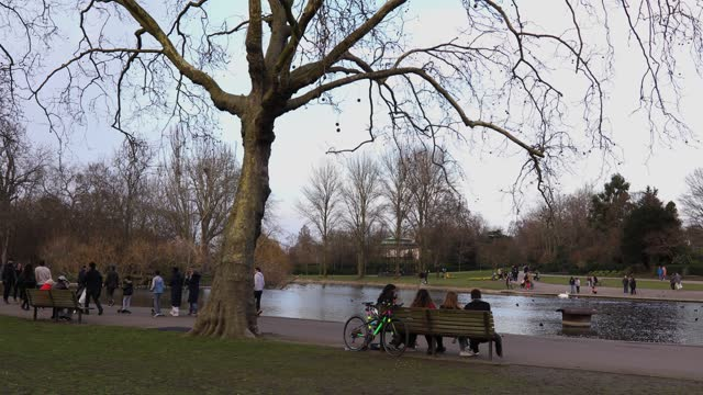 people walk in regents park on february 21, 2021 in london, united kingdom. after a surge of covid-19 cases, fueled partly by a more infectious... - standing water stock videos & royalty-free footage