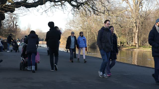 people walk in the park in regent's park during the third national lockdown, of the covid-19 pandemic on january 09, 2021 in london, england. with a... - people stock videos & royalty-free footage