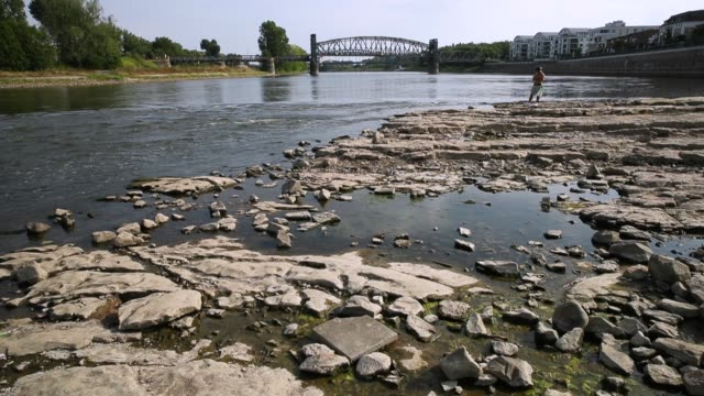 vídeos de stock, filmes e b-roll de people walk on an exposed and dried out portion of the elbe river bed that under normal conditions would be submerged under water during hot weather... - rio elbe