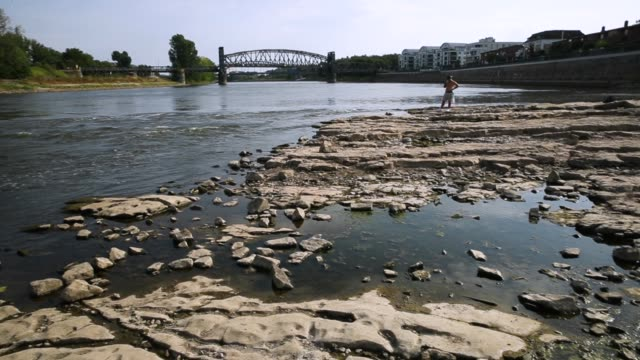people walk on an exposed and dried out portion of the elbe river bed that under normal conditions would be submerged under water during hot weather... - dry stock videos & royalty-free footage
