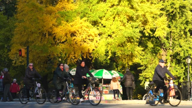 people walk, run and ride the bike on the park footpath along the autumn color trees around the hot dog stand at central park new york ny usa on nov. 11 2018. - ginkgo stock videos & royalty-free footage