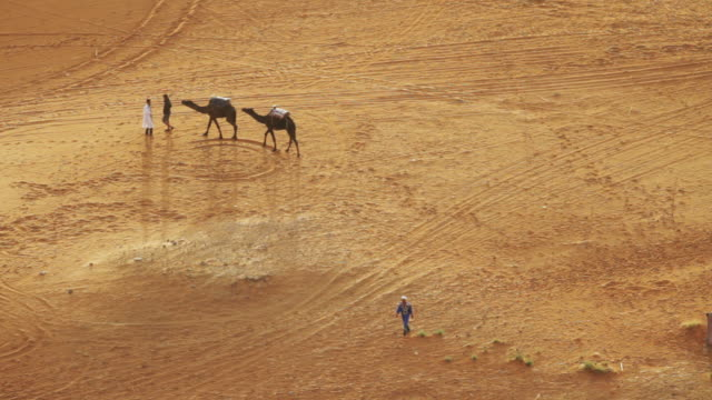 people walk their camels - self sufficiency stock videos and b-roll footage