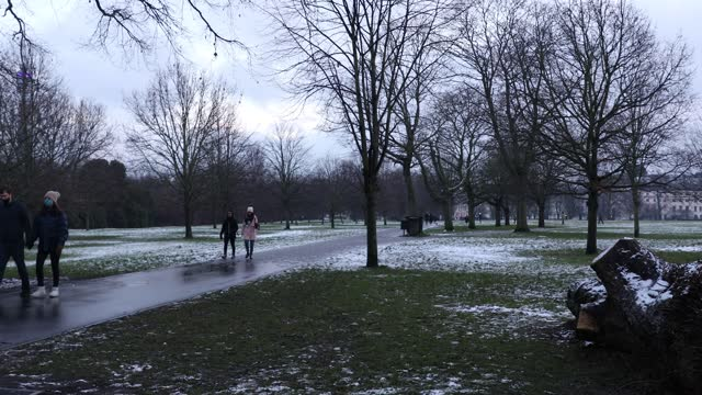 people walk through a snow covered regents park on january 24, 2021 in london, united kingdom. parts of the country saw snow and icy conditions as... - tree trunk stock videos & royalty-free footage