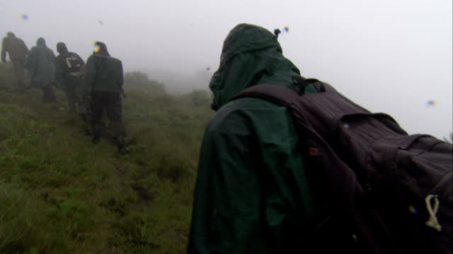 stockvideo's en b-roll-footage met people walk through mist and rain in volcanoes national park. available in hd. - duurzaam toerisme