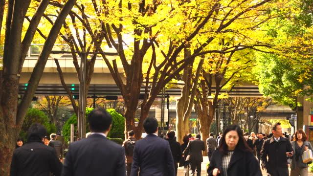 People walk through under the line of autumn leaves trees at Shinjuku Subcenter Nishi-Shinjuku, Tokyo Japan on November 24 2017.