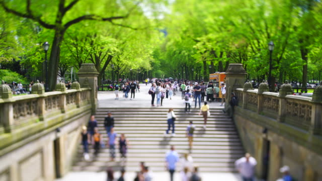vídeos de stock e filmes b-roll de people walk up and down the stairs of bethesda terrace, which are surrounded by rows of fresh green leaf trees at the mall in central park at new york city ny usa on may 06 2019. - fonte bethesda