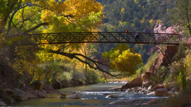 people walking across a bridge in zion national park - zion national park stock videos & royalty-free footage