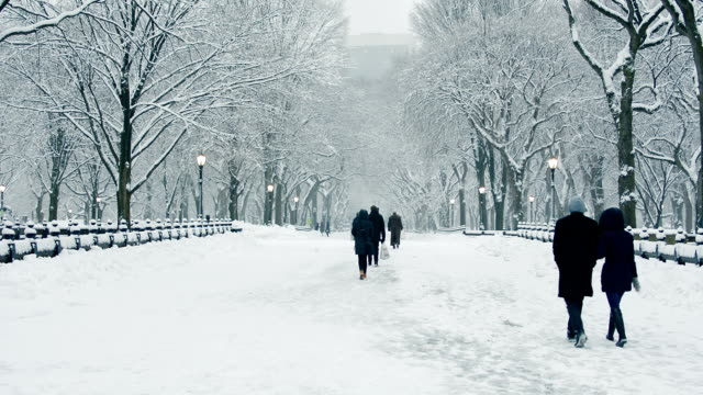 People walking along Central Park's Mall during snowstorm