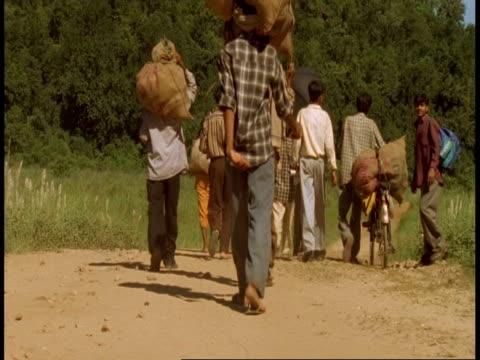 wa people walking along path into jungle, bandhavgarh national park, india - national icon stock videos & royalty-free footage