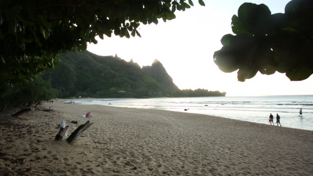 people walking and relaxing on turtle beach in kauai. - jamaican people stock videos and b-roll footage