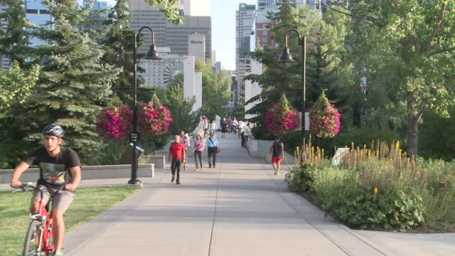 vidéos et rushes de ms people walking and running on path in park  / calgary, alberta, canada - canada