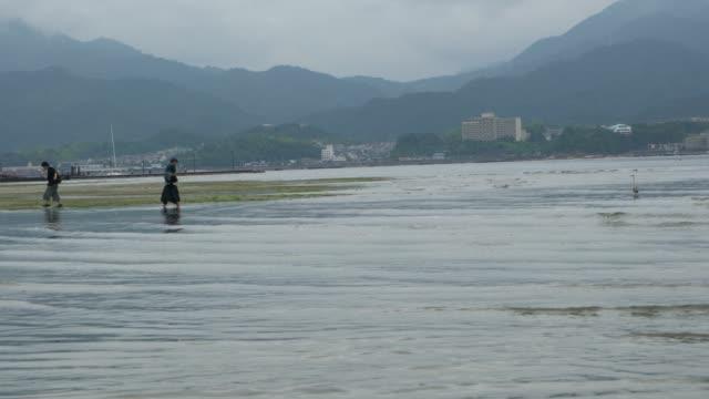 people walking around the itsukushima shrine iconic floating torii gate at low tide, japan - bassa marea video stock e b–roll