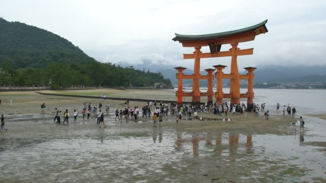 vídeos de stock, filmes e b-roll de people walking around the itsukushima shrine iconic floating torii gate at low tide, japan - vazante
