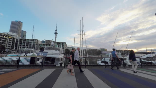 people walking by the marina at viaduct harbour, auckland new zealand - auckland ferry stock videos & royalty-free footage