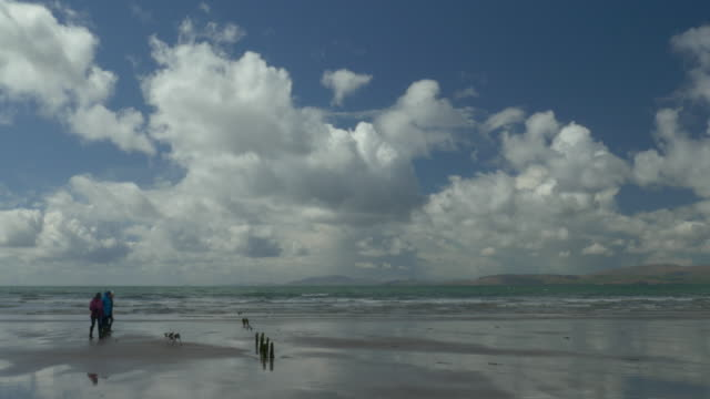 ws people walking dog on rossbeigh beach, county kerry, ireland, waves, dramatic clouds - dog walking stock videos & royalty-free footage