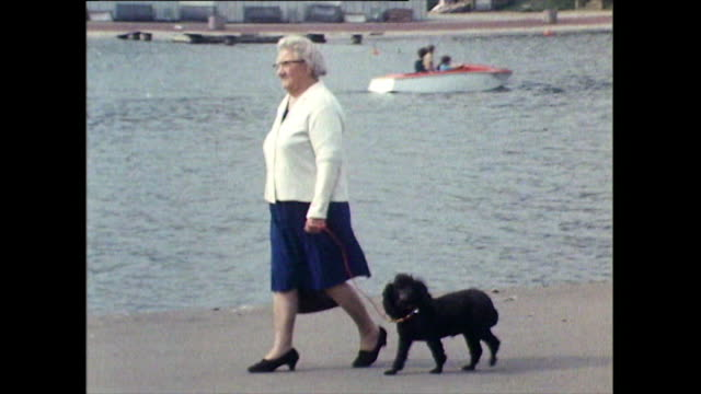 people walking dogs beside serpentine lake; 1971 - small group of animals stock videos & royalty-free footage