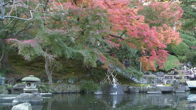 people walking down steps under autumn leaves - 神奈川県点の映像素材/bロール