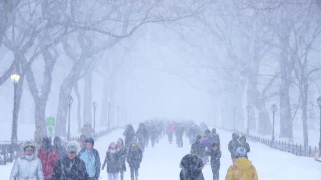 People walking down The Mall Central Park during the serious winter snowstorm Jonas at dusk.