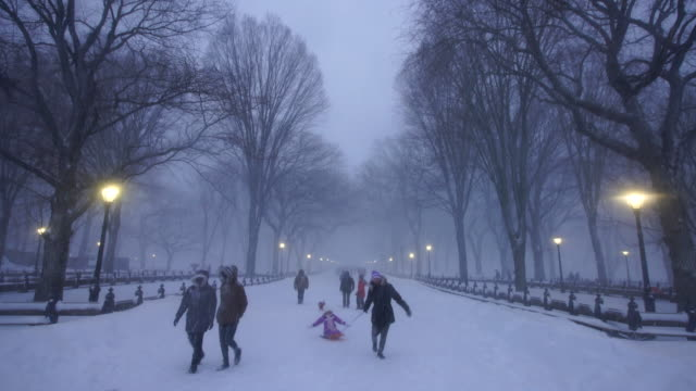 People walking down The Mall Central Park during the serious winter snowstorm Jonas.The streetlights illuminate the snowy the mall at dusk.