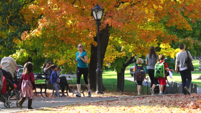People walking down the path under the autumnal color trees at Central Park.